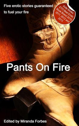 Pants on Fire: A collection of five erotic stories