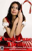 Candy Cane Thrills: A collection of five festive erotic stories