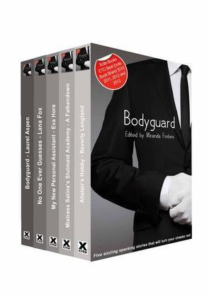 Bodyguard: A collection of five erotic stories