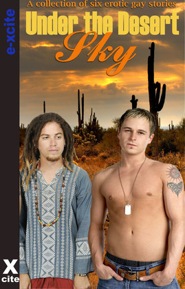 Under the Desert Sky: Gay erotic fiction