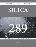 Silica 289 Success Secrets - 289 Most Asked Questions On Silica - What You Need To Know