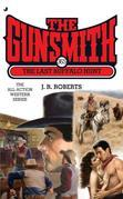 The Gunsmith #365: The Last Buffalo Hunt