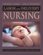 Labor and Delivery Nursing: Guide to Evidence-Based Practice