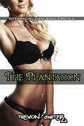 The Plantation (Interracial Gangbang Erotica)