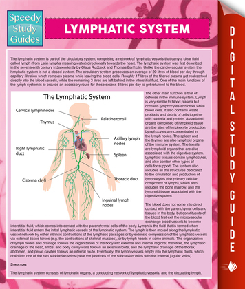 Lymphatic System: Speedy Study Guides