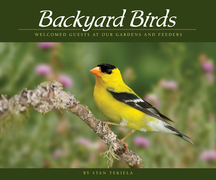 Backyard Birds: Welcomed Guests at Our Gardens and Feeders