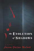 Evolution of Shadows