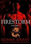 Firestorm: Volume 1