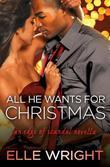 All He Wants for Christmas: A Novella