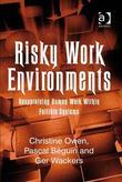 Risky Work Environments: Reappraising Human Work Within Fallible Systems