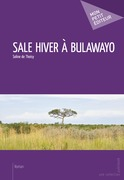 Sale hiver à Bulawayo