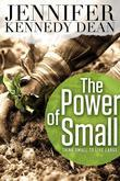 The Power of Small: Think Small to Live Large
