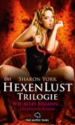 Die HexenLust Triologie  - Wie alles begann | Erotischer Roman (Dominanz, paranormale Erotik, Liebesgeschichte)