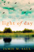 Light of Day: A Novel