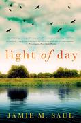 Light of Day: A Novel