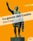La guerre des Gaules