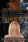 The Realms of War Trilogy 2 (Fantasy, Reluctant, Elf, Monster Erotica Bundle)