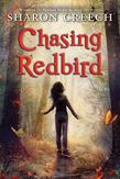 Chasing Redbird