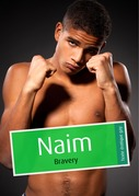 Nam (rotique gay)