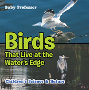 Birds That Live at the Water's Edge | Children's Science & Nature