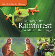 Animals of the Rainforest | Wildlife of the Jungle | Encyclopedias for Children