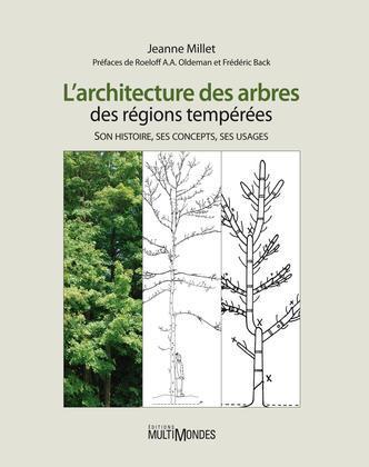 L'architecture des arbres des régions tempérées