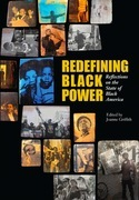 Redefining Black Power: Reflections on the State of Black America