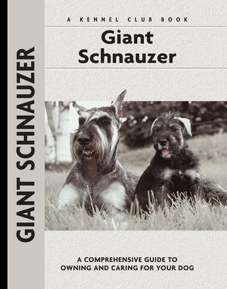 Giant Schnauzer
