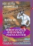 Taylor & Sons 01 Cowboy Supply