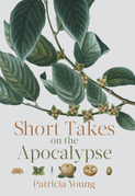 Short Takes on the Apocalypse