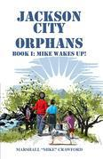 Jackson City Orphans: Book I