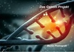 Das Genom Projekt