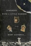 Somebody with a Little Hammer: Essays
