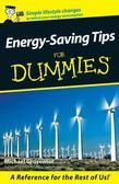 Energy-Saving Tips For Dummies