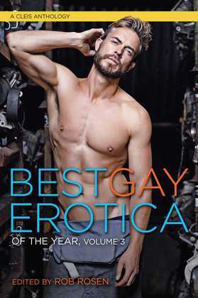 Best Gay Erotica of the Year, Volume 3
