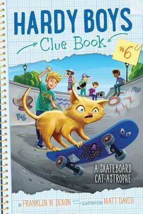 A Skateboard Cat-astrophe
