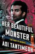 Her Beautiful Monster: The Ravi PI Series