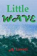 Little Wave