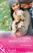 The Marine Makes His Match (Mills & Boon Cherish) (Camden Family Secrets, Book 1)