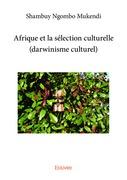 Afrique et la sélection culturelle (darwinisme culturel)