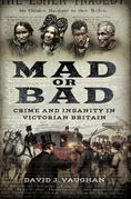 Mad or Bad: Crime and Insanity in Victorian Britain