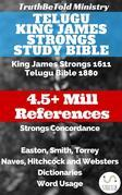Telugu King James Strongs Study Bible
