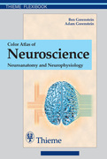 Color Atlas of Neuroscience: Neuroanatomy and Neurophysiology