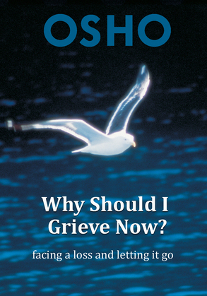 Why Should I Grieve Now?: facing a loss and letting it go