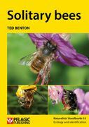 Solitary bees