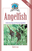 Angelfish: Understanding and Keeping Angelfish