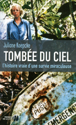 Tombe du ciel