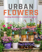 Urban Flowers: Creating abundance in a small city garden