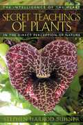 The Secret Teachings of Plants
