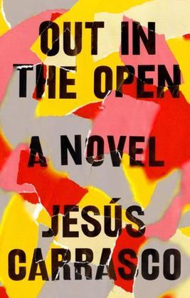 Out in the Open: A Novel